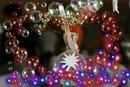 la bulle de verre