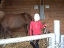 l'equitation