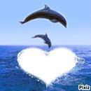 coeur et dauphin