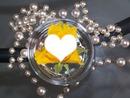 Rose perles
