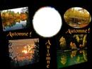 cadre d'automne