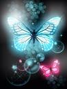 la mariposa bella