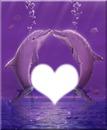 Dauphin coeur