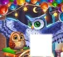 corujas / owls / búhos