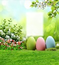 Cc huevos de pascuas