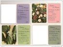 cadre fleur et poesie des fleurs