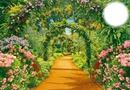 Beautiful garden #2