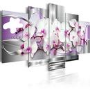 rivière d'orchidées