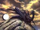 Dragons Noir de La frontier Niçoise