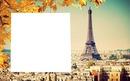 {pray for paris}