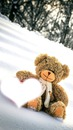 Ml Love**Teddy**