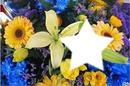 Parfum de fleurs*