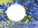 **Trés fleurs bleu**