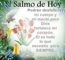renewilly el salmo