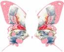 Cc mariposaa