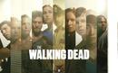 walking dead sibrevivientes