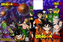 dragon ball dvd 4