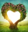 Árbol corazón en el prado