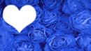 Femme au rose bleu