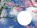 le printemps !