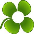 trevo de 4 folhas / 4 Leaf Clover
