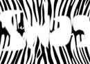 swag zebre