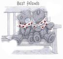 une amie pour la vie
