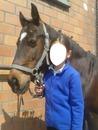 visage acompagné de cheval magnifique