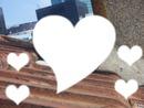 L'amour sur les toits