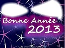 bonne année2013