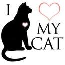 I coeur my cat 1