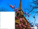Torre Eiffel / Tour Eiffel