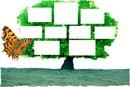 arbre genealogique 9