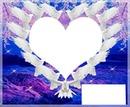 colombes forme un coeur en couleur 2 photos