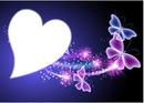 borboletas neon