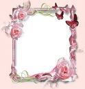 Marco de rosas y mariposas