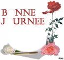 BONNE JOURNEE AVEC ROSE