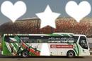 Bus Algerie
