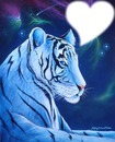 tigre blanc coeur