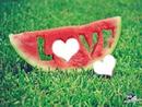 sandia love