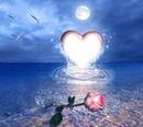 Love++##