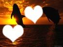 couché  de soleil  romantique