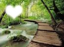 la nature coeur