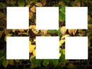 cadre 6 photos automne