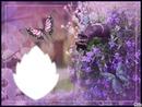 /*Trés fleurs bleue/*