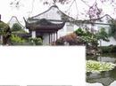 paysage chine