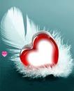 Plumas y corazones