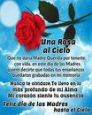 una rosa en el cielo