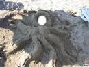 La tête dans le sable !!!