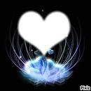 Coeur Glaçé